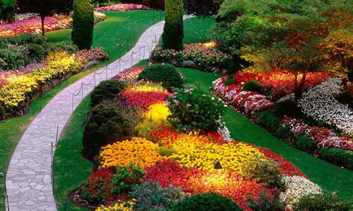 Landscape Design Louisville Ky Arbor Tree Care